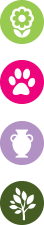 logo_activites